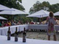 Visitan más de tres mil personas la Feria del Vino y Queso en Tepoztlán