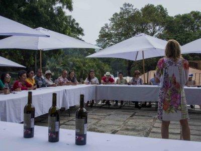 """<a href=""""/noticias/visitan-mas-de-tres-mil-personas-la-feria-del-vino-y-queso-en-tepoztlan"""">Visitan más de tres mil personas la Feria del Vino y Queso en Tepoztlán</a>"""
